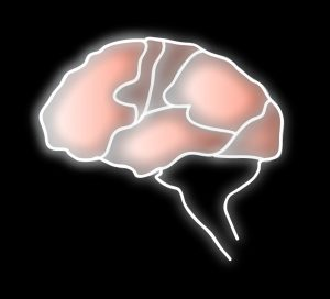 Human Brain affects Human Factors & Eyewitness Testimony