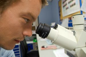 Evaluating Evidence Under the Microscope